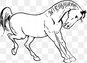 Kangaroo Outline - Tennessee Walking Horse Show Jumping Clip Art PNG