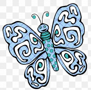 Butterfly - Butterfly Coloring Book Image Insect Drawing PNG