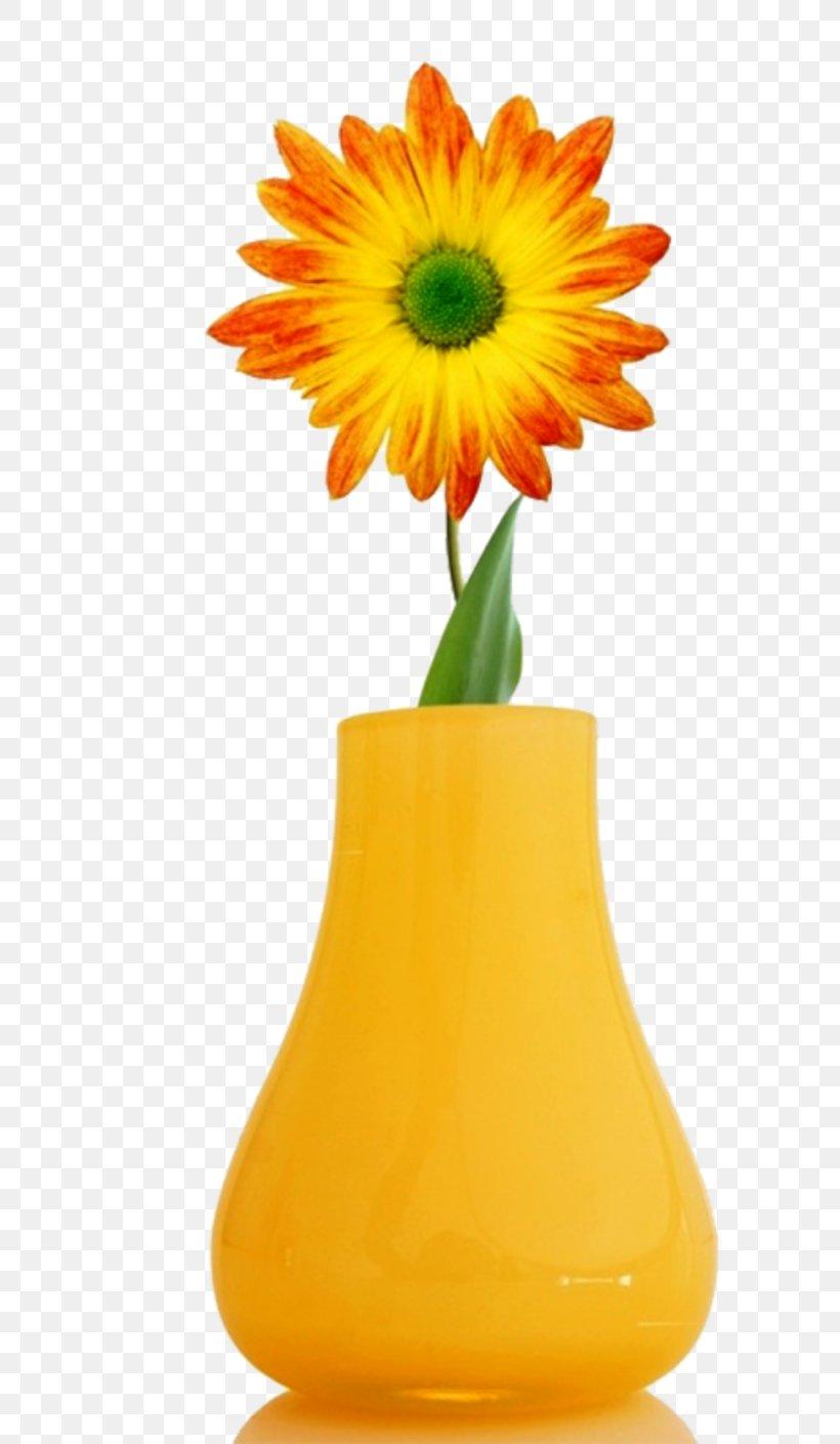 Flower High Definition Television Desktop Wallpaper 1080p