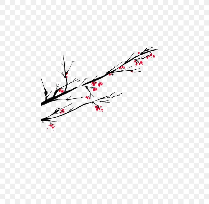 Clip Art, PNG, 800x800px, Flower, Branch, Google Images, Point, Red Download Free