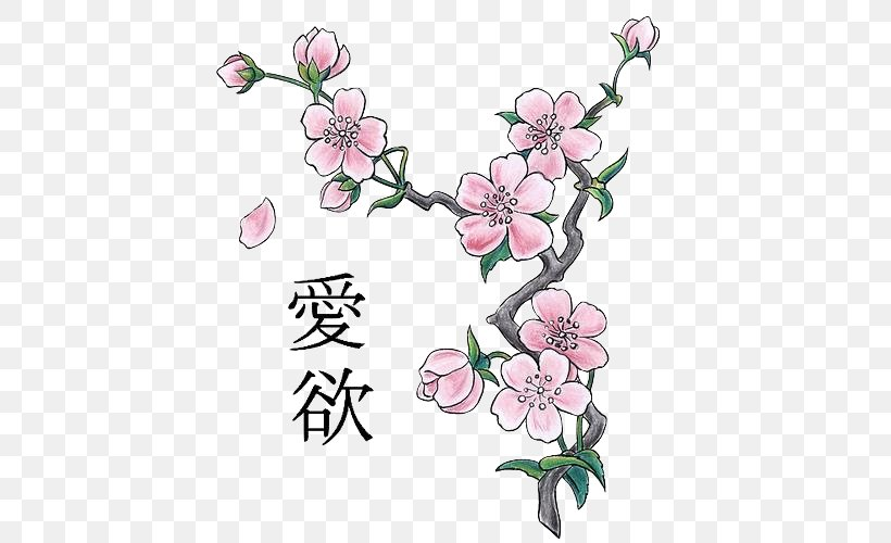 Cherry Blossom Drawing Png 500x500px Cherry Blossom Art Blossom Branch Cherry Download Free
