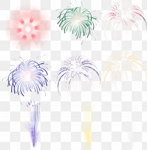 Maximo - Pyrotechnics Light Fireworks PNG