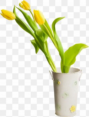 Tulips - Cut Flowers Tulip Plant Clip Art PNG