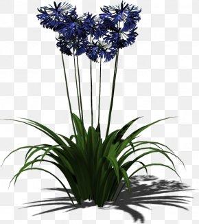 Plant - Plant Floral Design Flowerpot Cut Flowers PNG