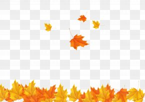 Fall Maple Leaves Background Image - Autumn Leaf Clip Art PNG