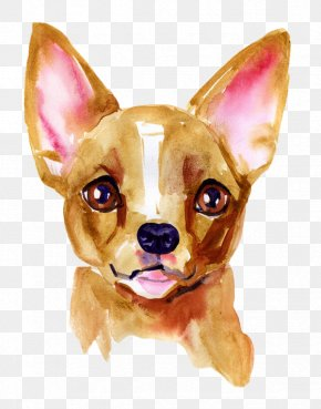 Dog Shot Schedule - Chihuahua Puppy Dachshund Dog Breed Jack Russell Terrier PNG