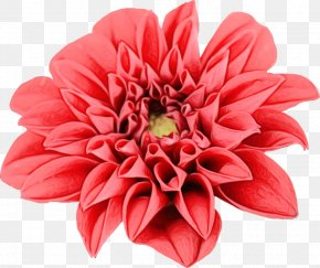 Artificial Flower Cut Flowers - Artificial Flower PNG