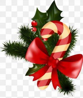 Santa Claus - Santa Claus Candy Cane Christmas Day Image Sugar Plum PNG