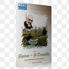 Padre Pio - Poster Tree PNG