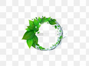 Green Leaf Download - Green Icon PNG