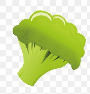 Broccoli - Broccoli Vegetable PNG