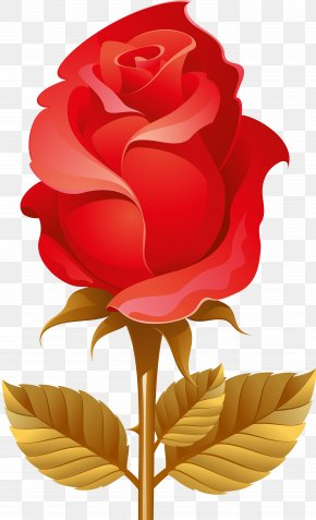 Red Rose - Mother's Day Picture Frames Clip Art PNG