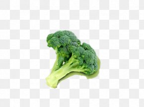 Broccoli - Broccoli Cauliflower Vegetable Food Masterfile Corporation PNG
