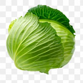 Green Cabbage Vegetable - Cabbage Leaf Vegetable Blanching PNG