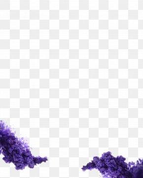 Hydrangea Buddleia - Smoke Bomb PNG