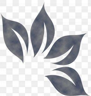 Perennial Plant Flower - Leaf Plant Flower Perennial Plant PNG