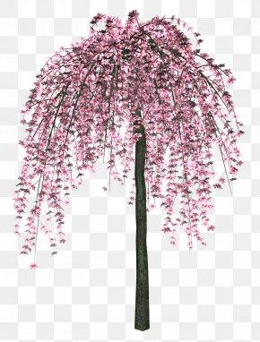 Flower Tree - Tree Clip Art PNG