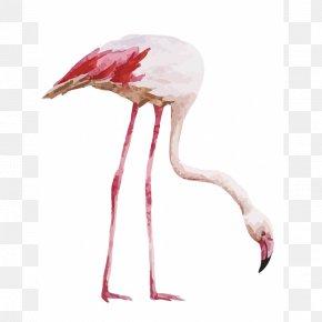 Flamingo - Drawing Watercolor Painting Flamingo Royalty-free PNG