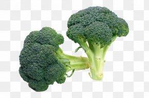 HD Broccoli - Broccoli Vegetable Food Recipe Salad PNG