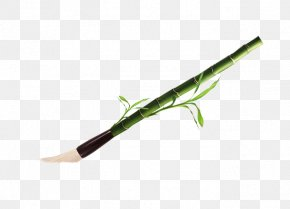 Traditional Bamboo Brush - Plant Stem PNG