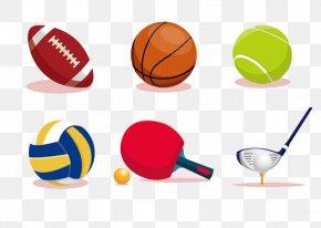 Sports Equipment Vector - Ball Game Sport Euclidean Vector PNG