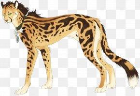 Cat - King Cheetah Cat Felidae Drawing Leopard PNG