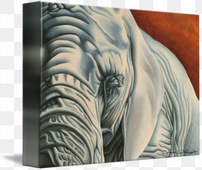 Tiger - Tiger Gallery Wrap Canvas Modern Art PNG