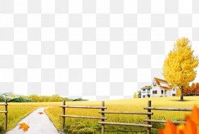 Autumn - Autumn Download Illustration PNG