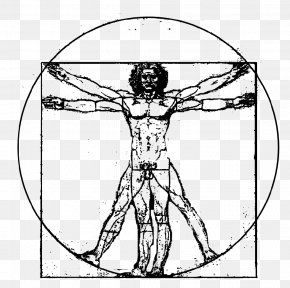Vitruvian Man - Vitruvian Man The Creation Of Adam PNG