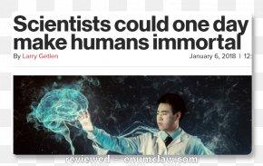 Scientist - Homo Sapiens Immortality Scientist Human Body Human Brain PNG