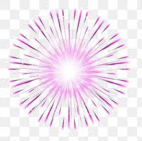 Pink Firework Transparent Clip Art Image - Petal Graphics Font Close-up Pattern PNG