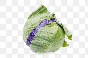 Fresh Green Cabbage - Red Cabbage Brussels Sprout Kale Vegetable PNG