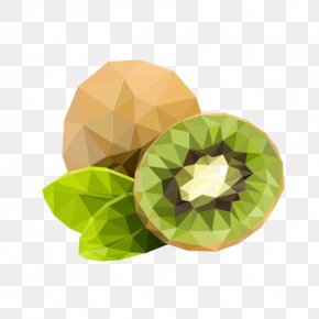 Low Poly - Festival Sustainable Development Low Poly Sustainability Natural Environment PNG