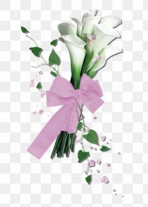 White Calla Flower Bouquet Ribbon Decorative Pattern - Arum-lily Floral Design Flower Clip Art PNG