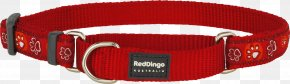 Red Collar Dog - Dog Collar Dingo Martingale Strap PNG