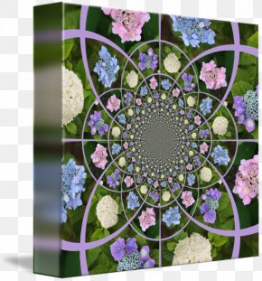 Design - Floral Design Symmetry Flowering Plant Pattern PNG