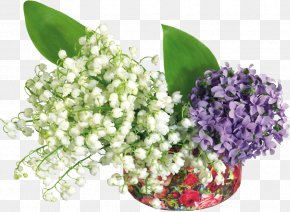 Tube - Lily Of The Valley Day Flower PNG