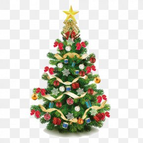 Christmas Tree Decoration - Christmas Tree Christmas Ornament Christmas Decoration PNG
