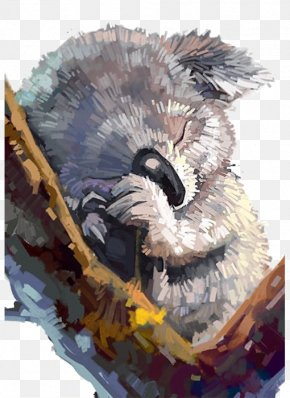 Hand-painted Cartoon Koala - Koala Painting Drawing Art Illustration PNG