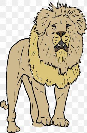 Lion Vector - Lion Free Content Clip Art PNG
