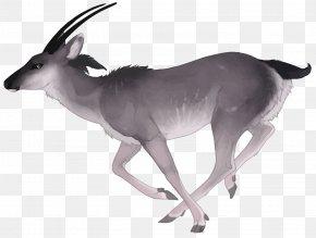 Vector Watercolor Deer - Antelope Deer Watercolor Painting PNG