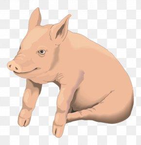 Cartoon Pig - Domestic Pig Pig Roast Clip Art PNG