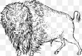 Bison - Cattle Drawing Clip Art PNG