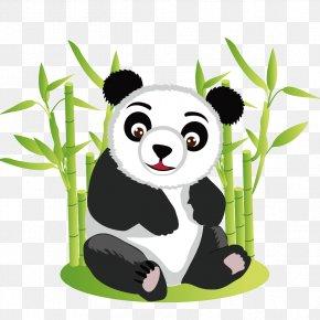 Naive Panda - Giant Panda Bear Red Panda Cuteness Clip Art PNG