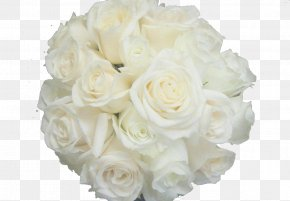 Bouquet Of White Roses Background Material - Garden Roses Beach Rose Centifolia Roses Flower White PNG