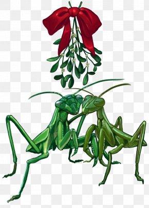 Mistletoe - Tyrannosaurus Holiday Dinosaur Christmas Art PNG