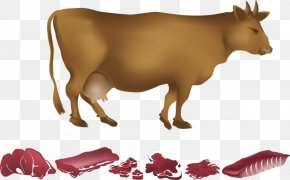 A Cow - Dairy Cattle Beef PNG