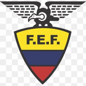 Football - Ecuador National Football Team Argentina National Football Team 2014 FIFA World Cup Copa América Centenario PNG