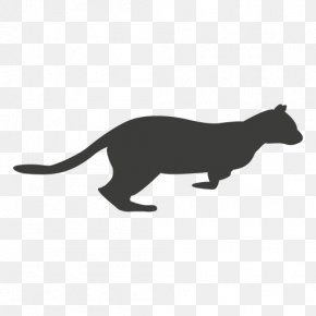 Sequence Vector - Cat Felidae Drawing Animal PNG