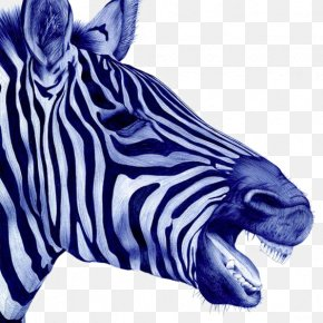 Zebra - Drawing Paper Ballpoint Pen Artwork Illustration PNG